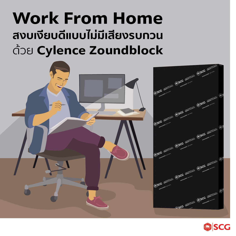 Cylence Zoundblock